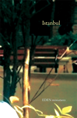 Istanbul-Cover-3.1-opt